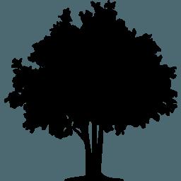 tree-32-xxl